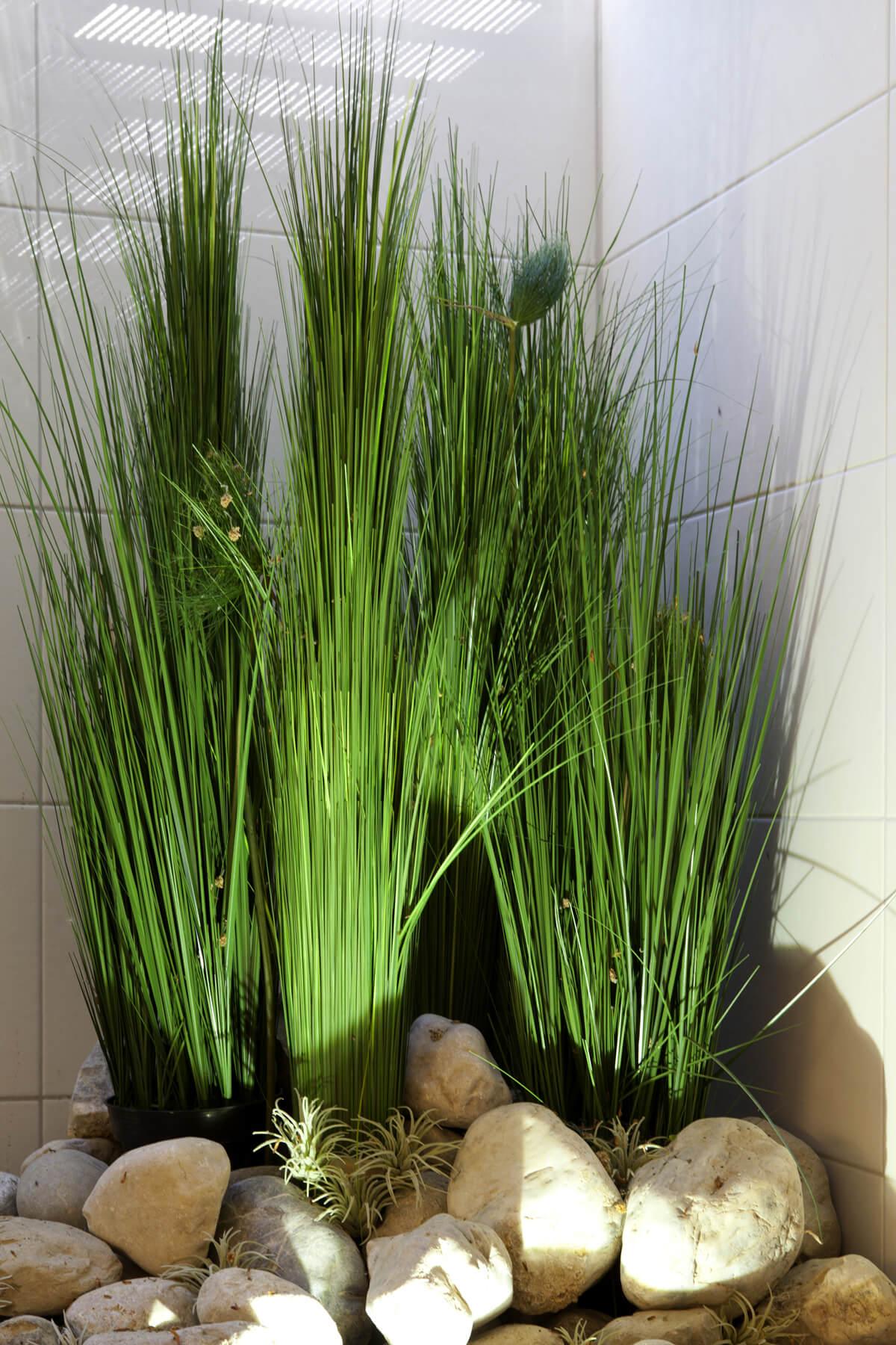Deko-Pflanzen in der Münchener Tagesfarm